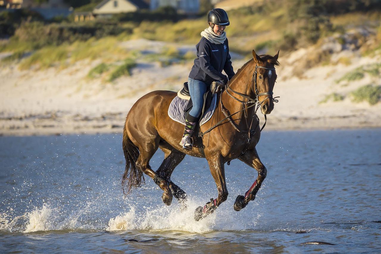 Get Fit The Fun Way ~ Horseback Riding!